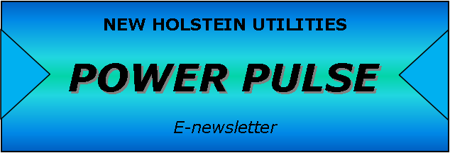 power pulse footer